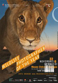 exposition-wildlife-photographeroftheyear