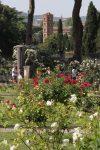 jardin-des-roses-rome4