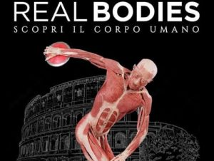 real-bodies-mostra-roma